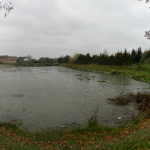 DSCN7755_panorama